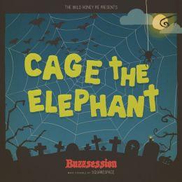 Ilustração para session da banda Cage The Elephant produzida pelo coletivo The Wild Honey Pie (NY) em parceria com o Squarespace.